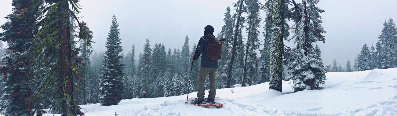 Image of 7 WINTER TREKS that anyone can do (2020 UPDATE)