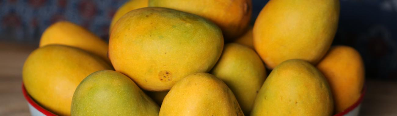 Image of International Mango Festival 2019 in Delhi is coming for mango lovers