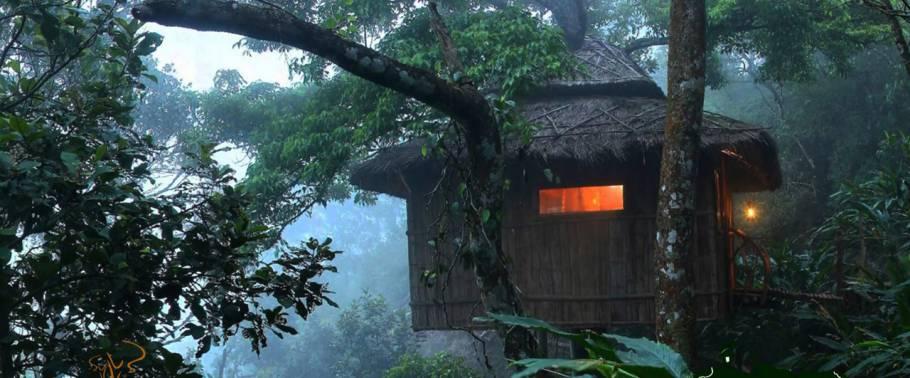Vanya Tree House, Thekkady
