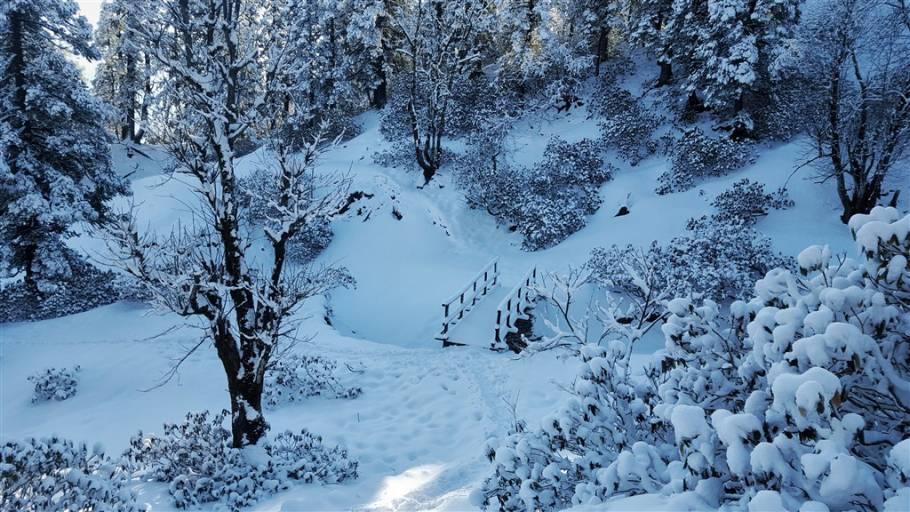 Kedarkantha Winter Trek, Uttarakhand