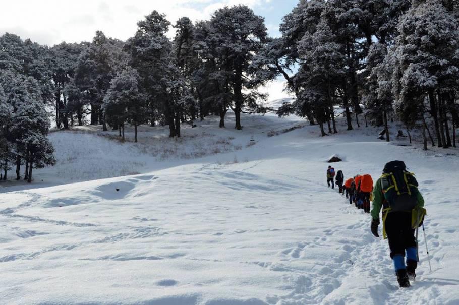 Kuari Pass Winter Trek, Uttarakhand