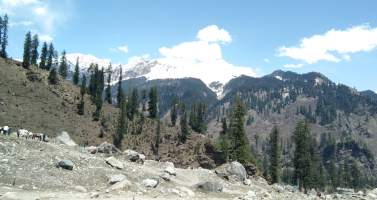 Image of Kullu Manali -Gateway to Apple's Valley and Snow Clad Mountains!