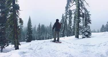 Image of Top 7 easy winter treks in India for beginners
