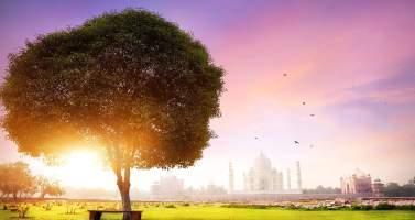Image of Make a wonderful visit to the heart of Uttar Pradesh Agra
