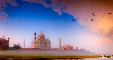 Image of Have the Perfect One Day Taj Mahal Tour