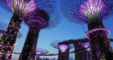 Image of Places in Singapore that every honeymoon couple must visit